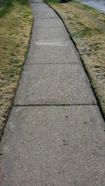 edged-lawn
