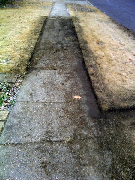 lawn-edging-during
