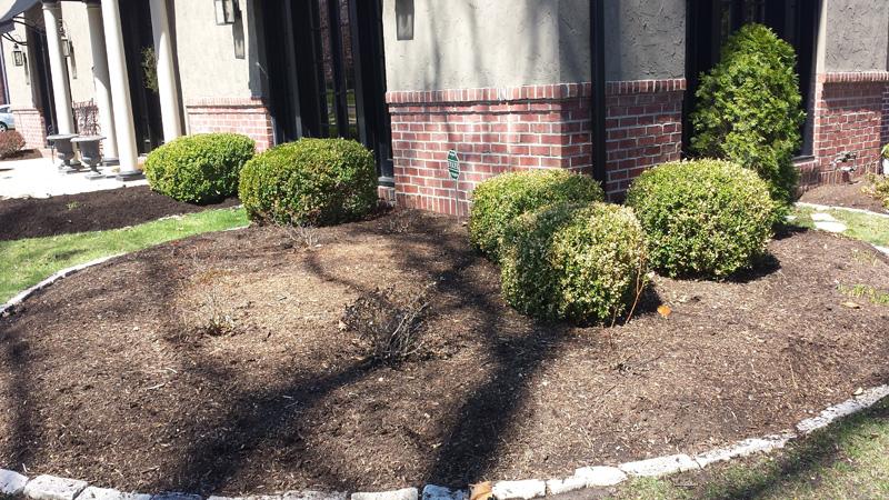 mulch-installation3
